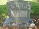 Newton Alexander Nelson