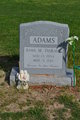 Profile photo:  Anne Marie <I>DisKavis</I> Adams