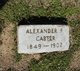 Profile photo:  Alexander F Carter