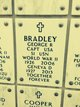 George Ray Bradley