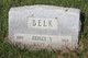 Mary Ann <I>Webster</I> Belk