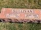 Mary Ann <I>White</I> Sullivan