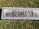 William L Sullivan