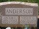 Nellie L Anderson