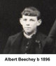 Profile photo:  Albert Beechey