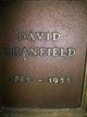 Profile photo:  David Shanfield