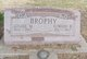Louise M <I>Bernhardt Reiss</I> Brophy