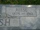 Reese Walsh