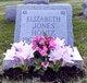Elizabeth <I>Reynolds</I> Hontz