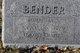 Robert Edwin Bender