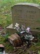 "Elizabeth ""Lizzie"" <I>Cornett</I> Hensley Couch"