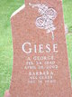 Profile photo:  A. George Giese