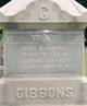 James Henry Gibbons