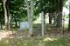 Simmons Cemetery #2