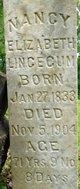Profile photo:  Nancy Elizabeth <I>Kenyon</I> Lincecum