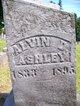 Profile photo:  Alvin D. Ashley