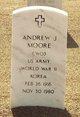 Andrew Jackson Moore