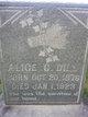 Profile photo:  Alice C <I>Nelson</I> Dill