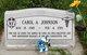 Dr Carol Ann <I>Bowers</I> Johnson