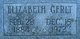 "Elizabeth Ann ""Lizzie"" <I>Hahn</I> Gerlt"