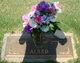 Profile photo:  Kathy D. <I>Richardson</I> Alred