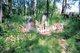 Leach Cemetery