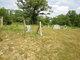 Clevenger-Gilbert Cemetery