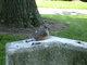 Medina County Graves