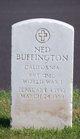 Profile photo:  Ned Buffington