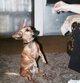 """Profile photo:  Shotsey """"Dog"""" Coley"""