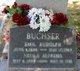Emil Rudolf Buchser