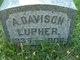 Profile photo:  A. Davison Lupher