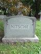 Profile photo:  Nitsche