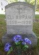 Eli Abram