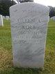 Eileen Ann <I>Trotten</I> Kolb