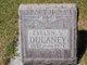 Evelyn A. <I>Violette Valentine</I> Dulaney