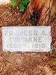Profile photo:  Frances A. Cunnane