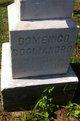 """Profile photo:  Domenico """"Dominick"""" Cogliandro"""