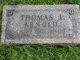 Thomas John Arnold