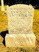 Anna H.A. Amundson