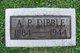 Profile photo:  A P Dibble