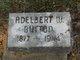 Profile photo:  Adelbert W Button