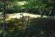 Black Cat District Cemetery