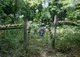 Teal Cemetery