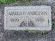 Arnold P Anderson