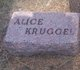Profile photo:  Alice Kruggel