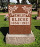 Profile photo:  Emilie <I>Henning</I> Bliese