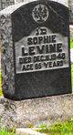 Sophie Levine