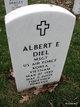 Profile photo:  Albert E Diel