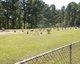 Dasinger Cemetery